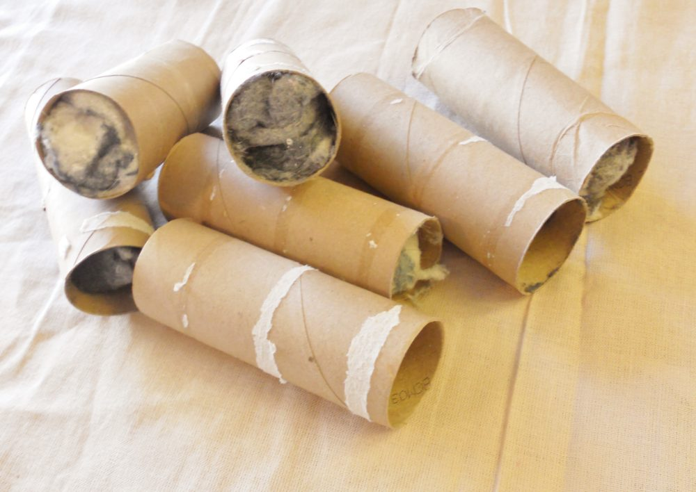 Toilet Paper Roll Firestarters