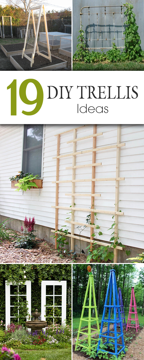 Diy Trellis Ideas Part - 45: DIY Roundup