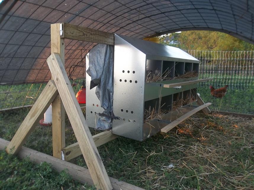 Metal Chicken Nest Box