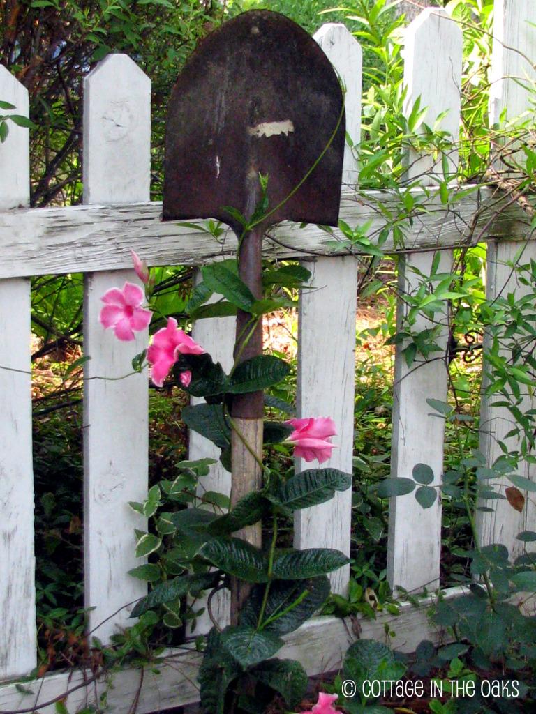Old Garden Tools Trellis