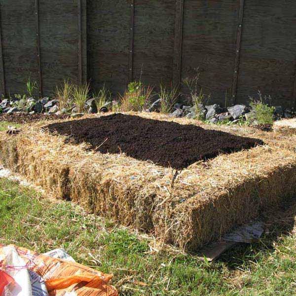 straw bale garden bed edging