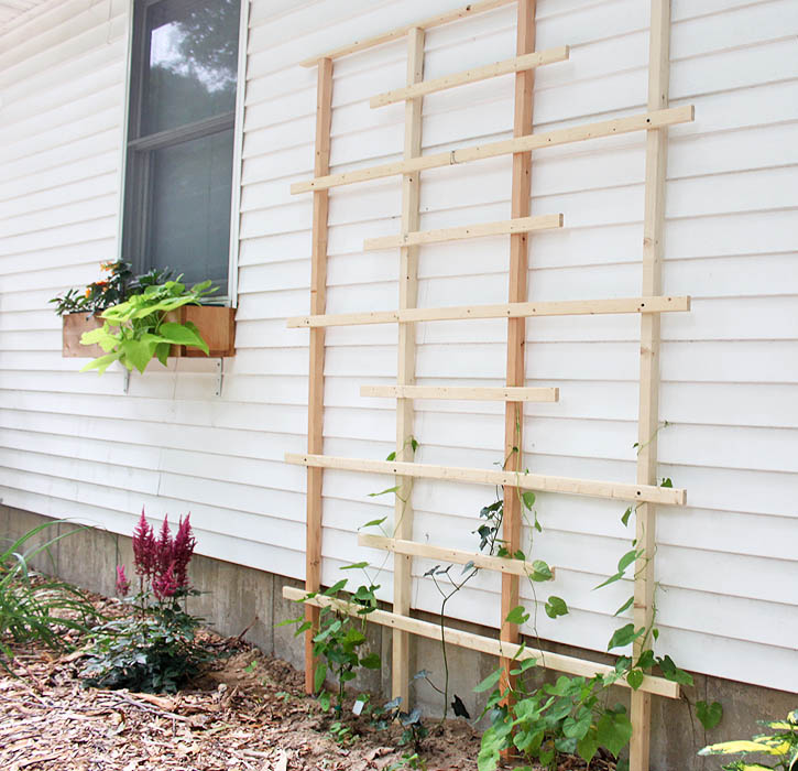 Diy Trellis Ideas Part - 26: Trellis Made From Scrap Pieces Of Wood