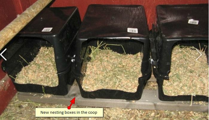 Use Old Dish Pans as Nesting Boxes
