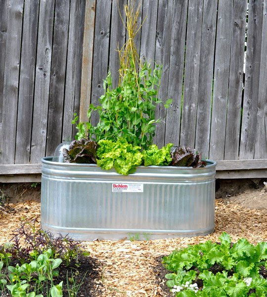 Use A Galvanized Tub As A Planter