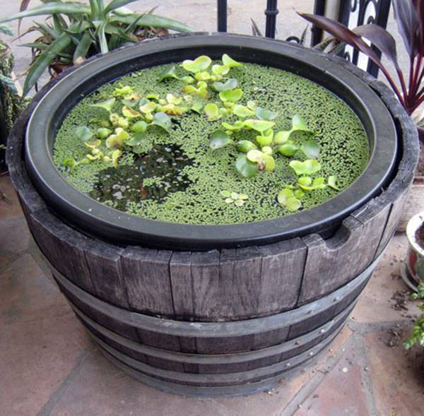 Wine Barrel Water Garden