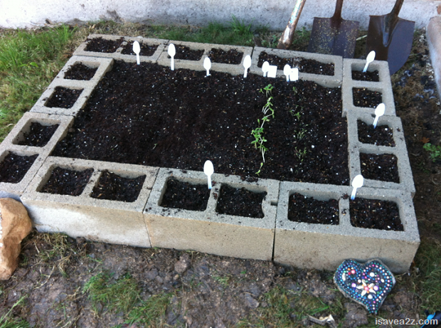 Raised Bed Garden Made Of Cinder Blocks