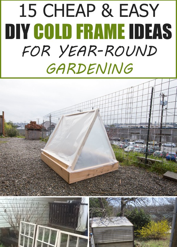15 Cheap & Easy DIY Cold Frame Ideas for Year-Round Gardening