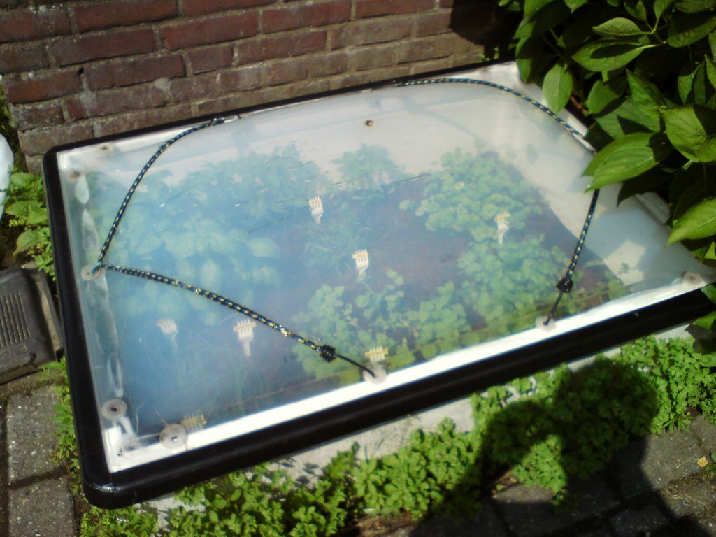 Cold Frame From an Old Skylight Dome