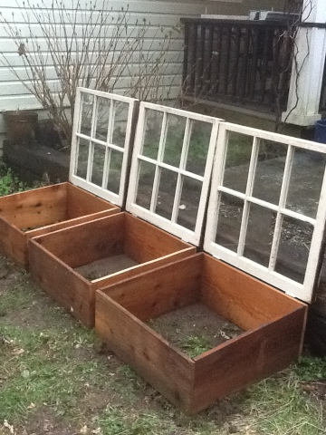 Cold Frames From Old Windows and Wood