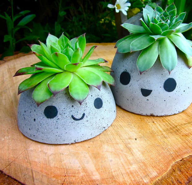 Cute Concrete Planters