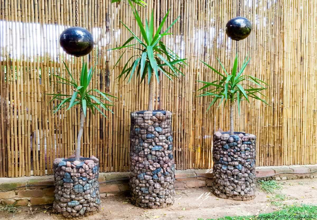 Stunning and Affordable Gabion Planters