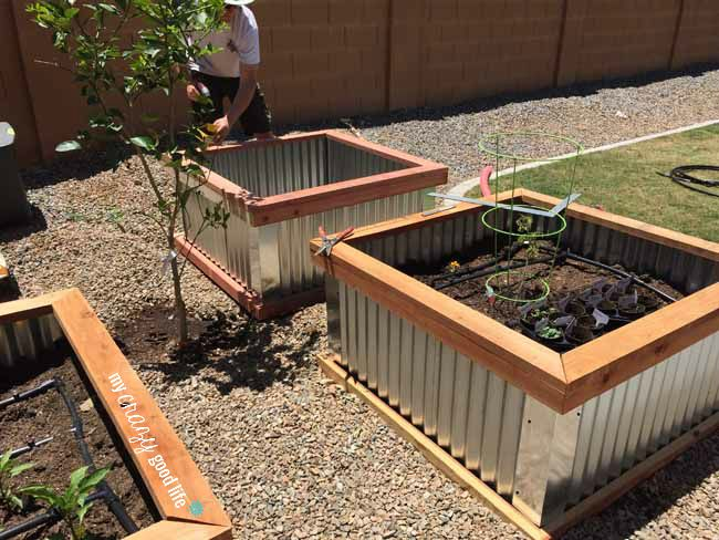 Wood and Steel Raised Garden Beds