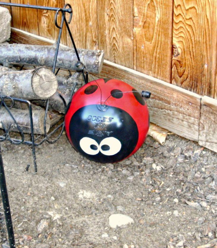 Bowling Ball Lady Bug