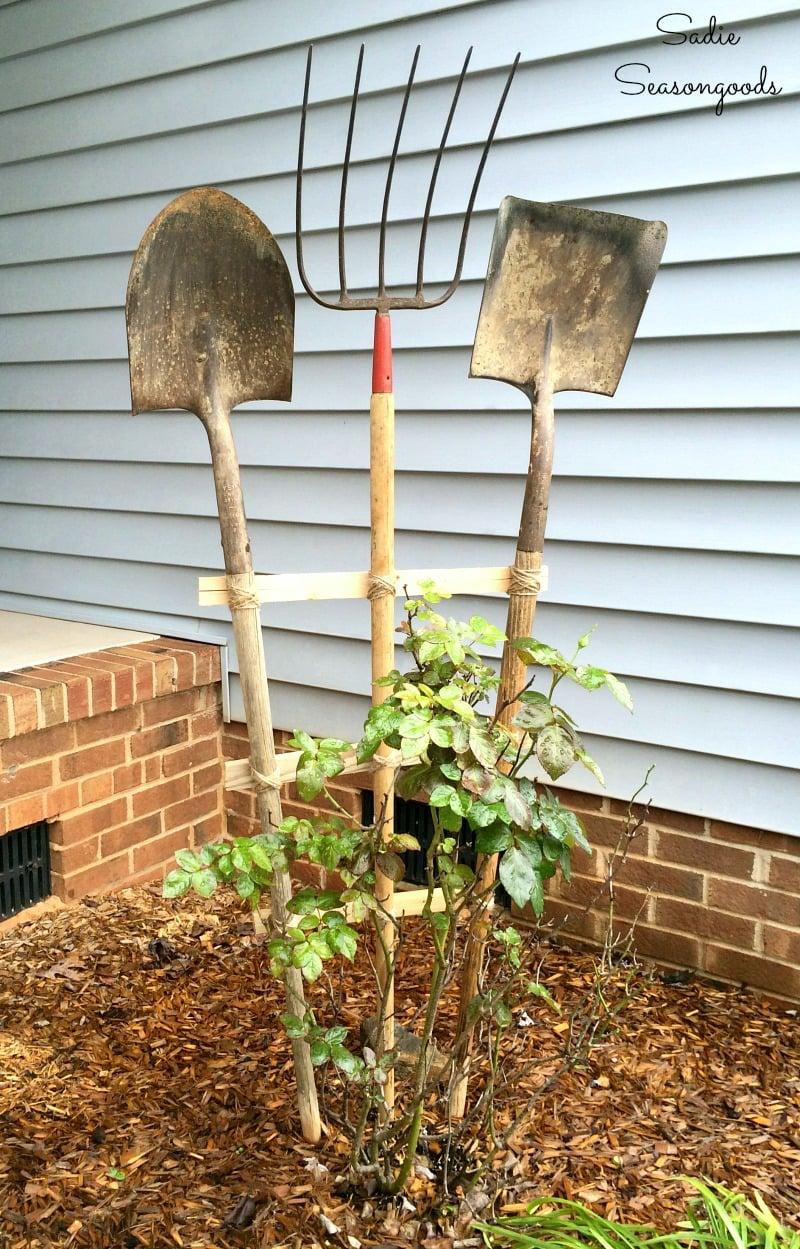 Trellis Using Old Garden Tools